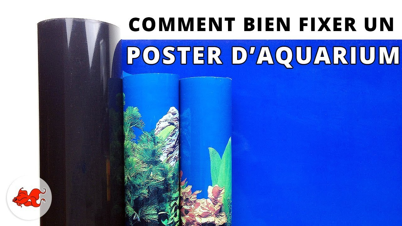tuto comment fixer un poster de fond d 39 aquarium lepoissonrouge le blog de annie. Black Bedroom Furniture Sets. Home Design Ideas