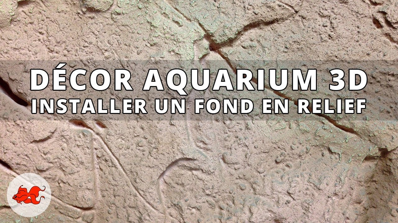 tuto comment fixer un poster de fond d 39 aquarium lepoissonrouge le blog d 39 annie. Black Bedroom Furniture Sets. Home Design Ideas