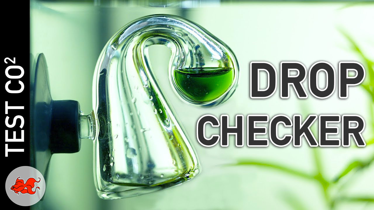 Drop checker Test CO2 permanent pour aquarium